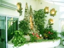 растения для фитодизайна
