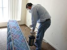 эффективные средства уничтожения и дезинфекции квартиры