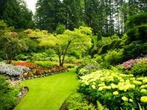Ландшафтный дизайн дачи своими руками, оформление участка
