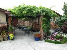 пергола садовая для винограда и роз