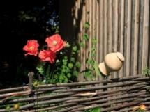 Декоративная плетень из лозы своими руками
