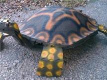поделки из старых покрышек - черепаха